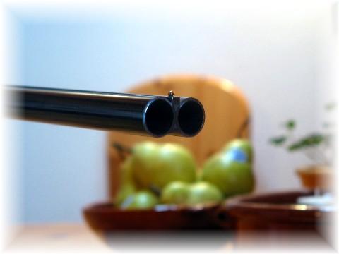 muzzle-1mittlere-webansicht.jpg