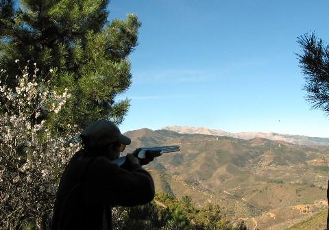jagd-andalusien-mittlere-webansicht.jpg
