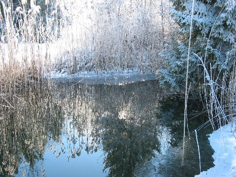 winter-37-mittlere-webansicht.jpg